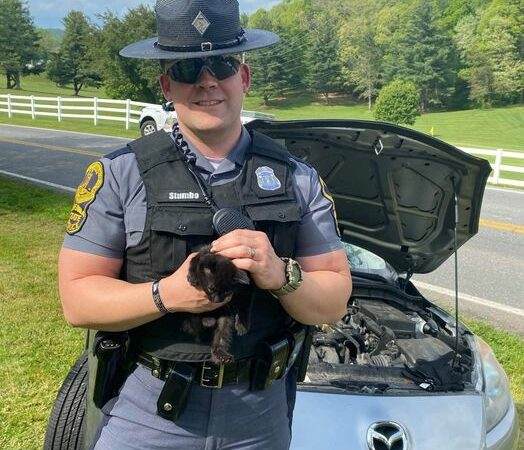 Virginia troopers rescue kitten from vehicle's engine compartment